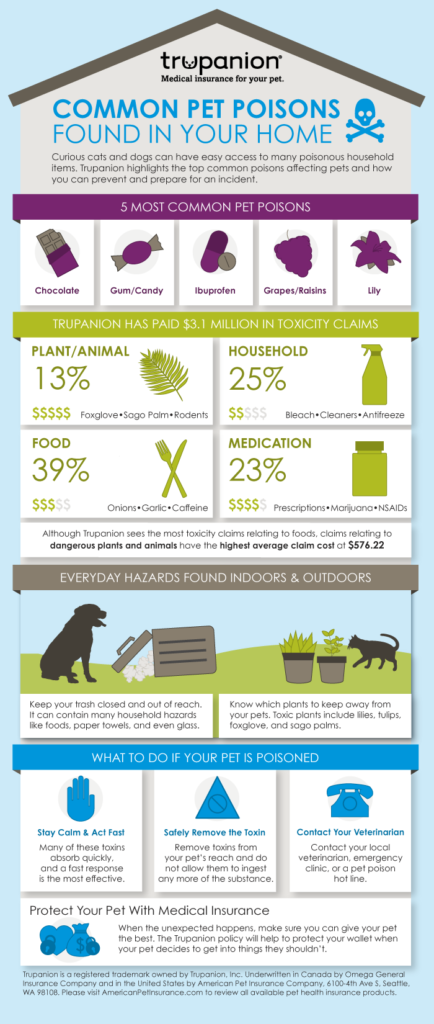Jennifer Ledford - Trupanion - Affiliate - Common Pet Poisons Found In Your Home - Love my pets!